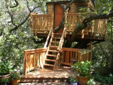 Treehouse Guys - HGTV