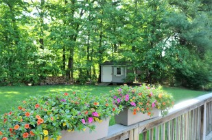 flower boxes back deck
