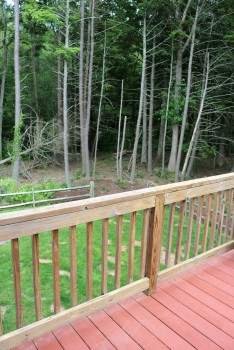 deck to woods
