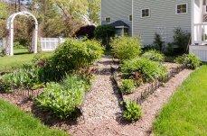 88 Slater Street hardy perennial gardens