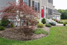 81 Avalon Drive professionally landscaped